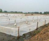 水蛭养殖  网箱