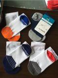 富立时尚潮流排汗防臭全棉短统运动袜