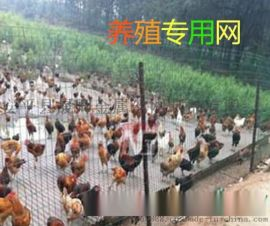 晟卿厂家销售1.5米x30米绿色养鸡铁丝网多钱一米