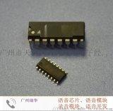 語音晶片ap8921a語音IC