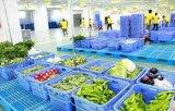 黔江塑料筐蔬菜水果筐周转筐厂家