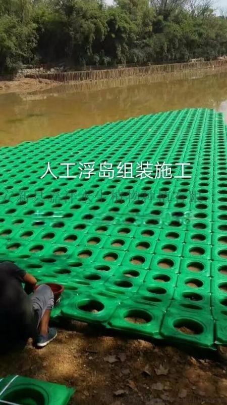 人工浮岛生产厂家 水生植物浮岛种植公司