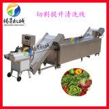 蔬菜切割清洗流水线 净菜配送中心生产线