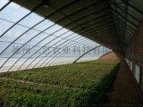 全年生產型日光溫室暖棚