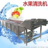 百香果自動清洗機 果蔬專用清洗機 羅漢果清洗機