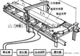 山东润华环保全国直销山东润华电子皮带秤工厂加工