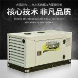 大泽动力TO16000ETX 柴油12kw车载静音发电机 12kw柴油发电机