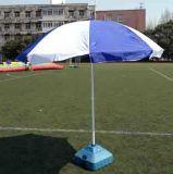 户外太阳伞租赁