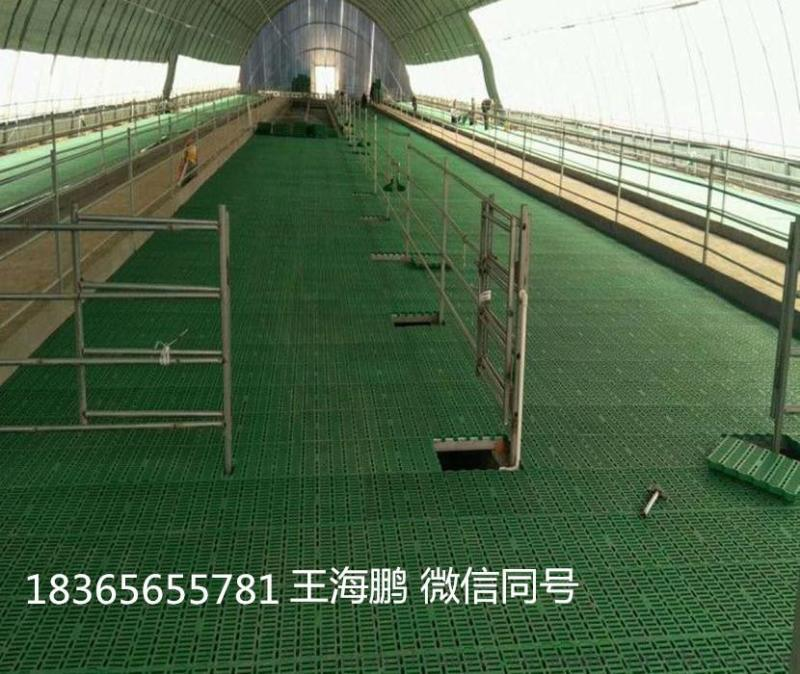 羊漏粪板厂家供应 塑料羊床报价 塑料羊床生产厂家