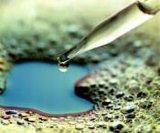 高溫油炸油性食品消泡劑生產廠家