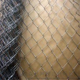 钱森喷薄植草用铁丝网勾花网