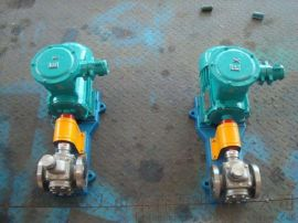 现货供应不锈钢齿轮泵 YCB齿轮油泵