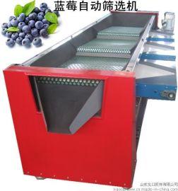 全自动蓝莓筛选分级机