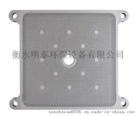 压滤机隔膜滤板_节能高效滤榨机价格_衡水明泰环保设