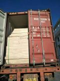 木材夹板专业集装箱海运