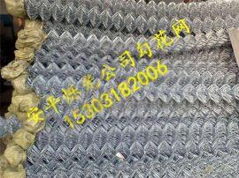 铁丝勾花网 钢丝勾花网 不锈钢丝勾花网