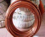 铜包钢绞线厂家  优质供应
