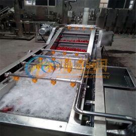 D5橄榄菜清洗机 水果大型清洗机 蔬菜气泡清洗设备