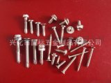 【优质供应】兴化固标不锈钢自攻自钻螺钉  非标定做