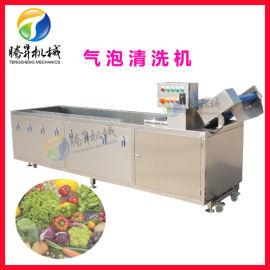 果蔬清洗设备 气泡式清洗机 叶类蔬菜清洗机 喷淋式清洗机