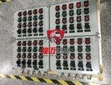 戶外防爆配電箱/500X400X200防雨箱