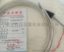 WZPQ2-E32气轮机热电阻