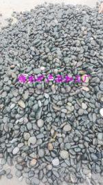 长期  天然雨花石 五彩雨花石 五彩鹅卵石