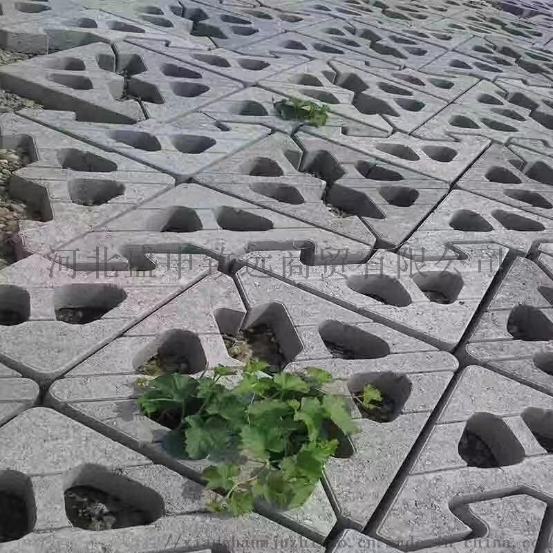预制生态护坡模具 水泥框格 阶梯式 盛申致远模具