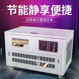 大泽动力TOTO12静音汽油发电机无刷电机