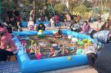 平顶山儿童沙滩池子中草药决明子工程塑料沙滩玩具