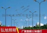 揚州弘旭廠家直銷12米路燈道路照明專用燈 飛利浦