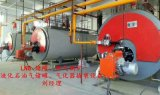 菏锅10吨低氮燃气蒸汽锅炉