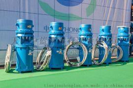 水池用QHB潜水混流泵