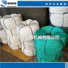 专业生产优质聚乙烯塑料拉丝机 圆丝机组