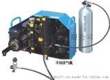 空气呼吸器空气填充泵COLTIR MCH16/ET