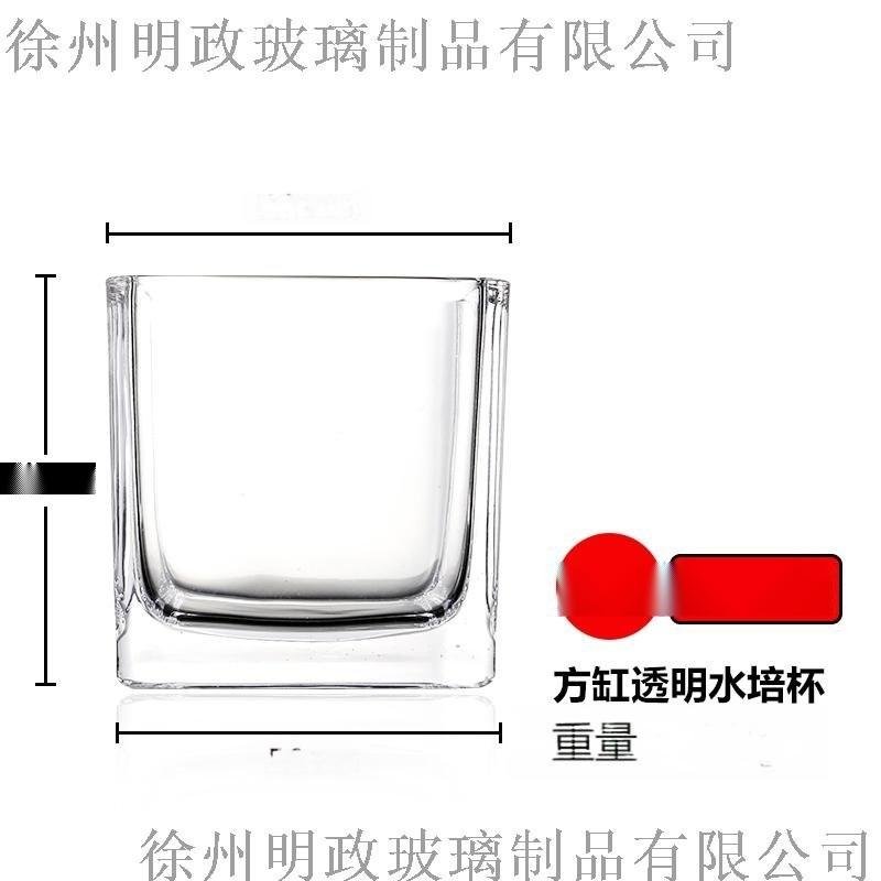 客厅水培植物容器玻璃瓶小清新干花插花摆件透明花器装饰品花瓶