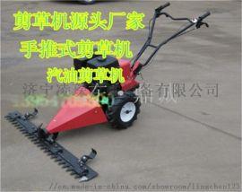 山东烟台农林  手推式草坪剪草机自走式汽油割草机