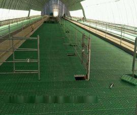 防滑塑料羊床漏粪板 羊床漏粪板报价 羊床漏粪网