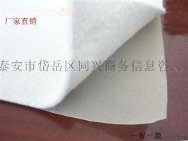 抚顺HDPE土工膜建筑土工膜塑料土工膜厂家15963157719王经理