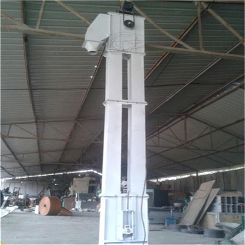 环链式颗粒挖斗提升机 垂直上料钢斗提升机qc