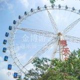 遊樂場設施/大型遊樂設備/50米觀光摩天輪