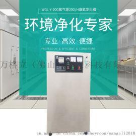 食品车间杀菌桶装水净化15G臭氧发生器消毒机