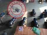 单螺杆泵 双螺杆泵 三螺杆泵的区别 SNS1300R38U12.1W21蛟河
