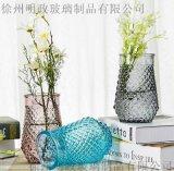 食肉花瓶玻璃花瓶綠蘿植物水培客廳裝飾花瓶插花玻璃花器