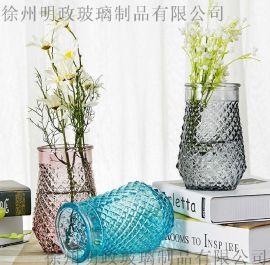 食肉花瓶玻璃花瓶绿萝植物水培客厅装饰花瓶插花玻璃花器