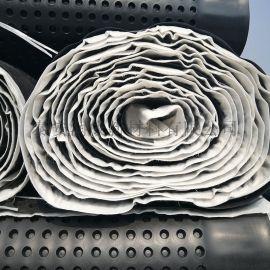 山东厂家直供排水板 屋顶绿化排水板