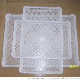 塑料单冻盘子 冷冻盘子 水产冻盘