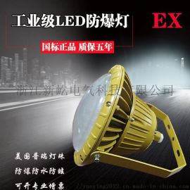ZAD301 LED免维护防爆灯