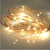 LED铜线灯串裸灯串装饰灯串