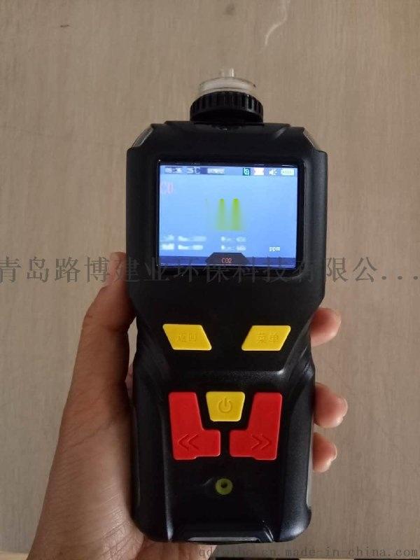 青島路博LB-MS4X一氧化碳硫化氫檢測儀